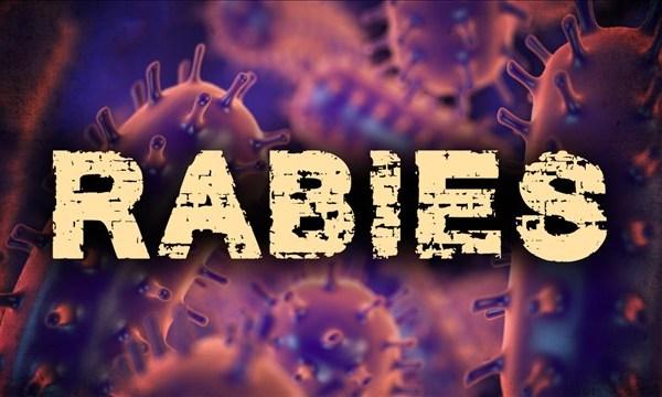 Rabies_1528721684042.jpg