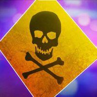 Poison_1535467263960.jpg