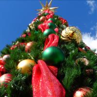 Christmas Tree_1510672422280.png