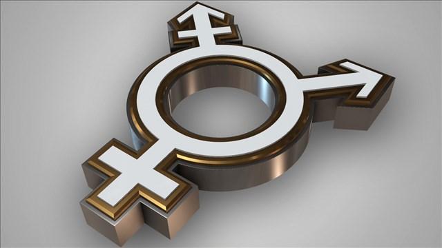Transgender Symbol_1524165702526.jpg