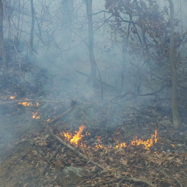 Brush Fire Risk Remains, Unsettled Pattern Looms Ahead
