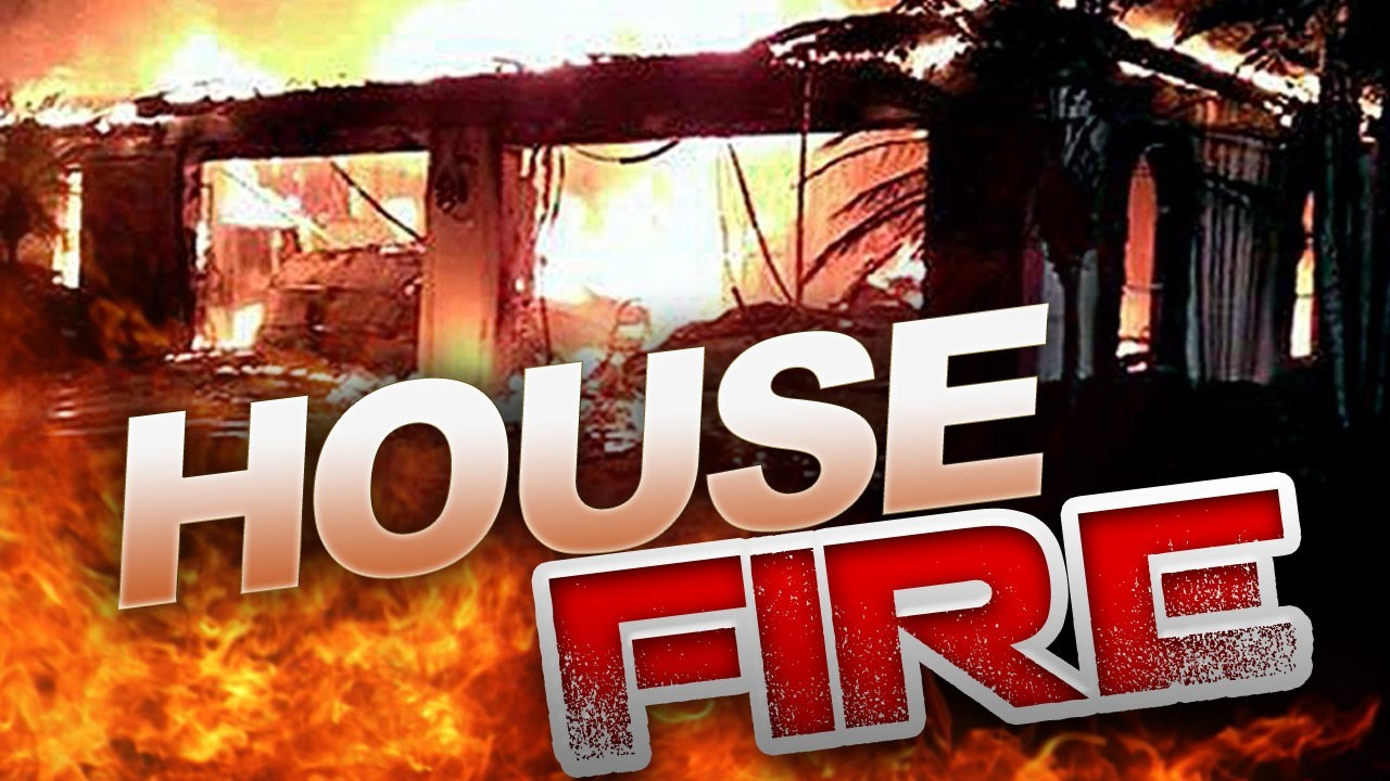Elderly woman, dogs die in Roane County house fire