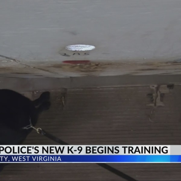 Ripley's K-9 Training Unit