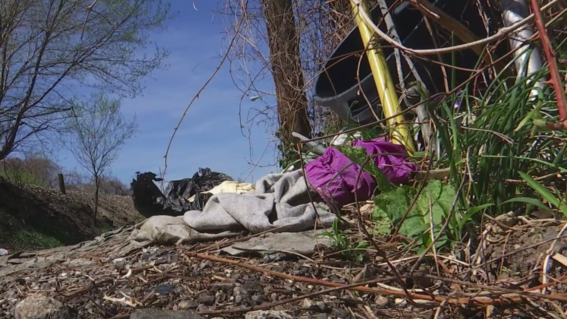'Team Up to Clean Up' events planned throughout Charleston during April