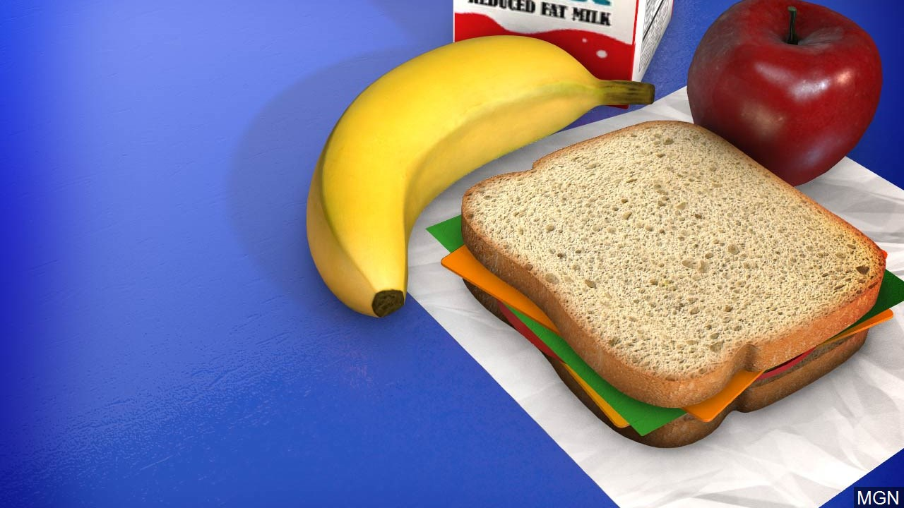 School lunch_1557328446892.jpg