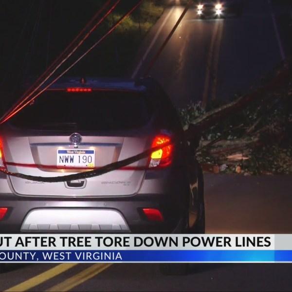 AEP Working to Clear Pennsylvania Avenue Following Fallen Tree